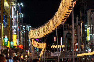 Osaka licht van ton vogels