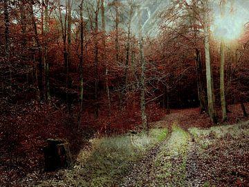 Mystischer Wald sur Heidrun Carola Herrmann