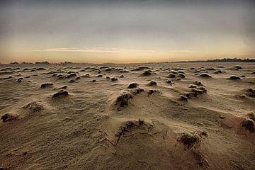 Desolate landscape van Edzo Boven