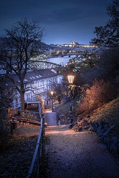 Burcht van Praag vanaf Vyšehrad van Dennis Donders