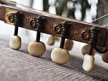 Stemmechanieken op een banjo mandoline van Martijn Wit
