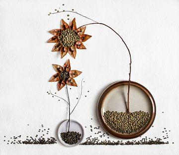 Herbarium ... 2, Dimitar Lazarov - von 1x