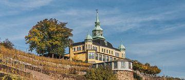 Spitz House Radebeul van
