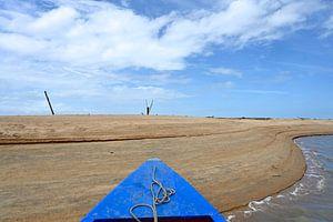 Korjaal aangemeerd aan zandkust van Gerda Beekers