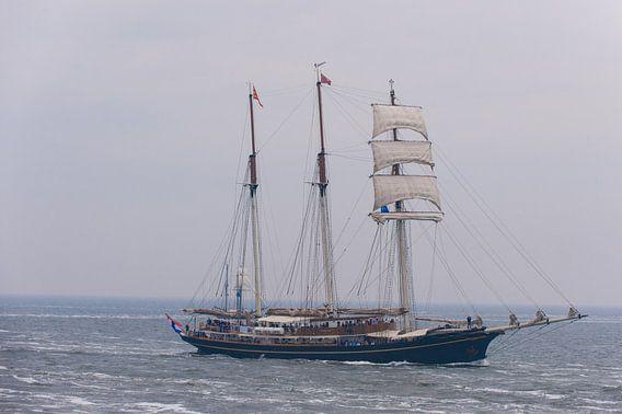 Just Sailing van Brian Morgan