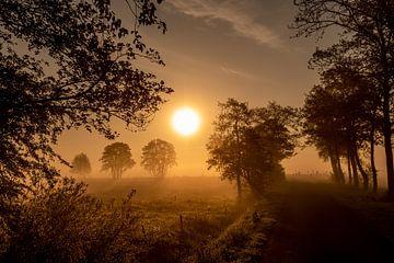 Sonnenaufgang in Roderwolde von Joris Brouwer