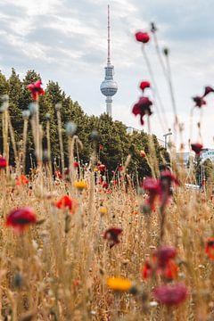 Bloemenpracht in Berlijn van Robin Berndt