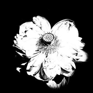 Les Jardins D'eau 1 von Esther Swaager ( Studio Toet)