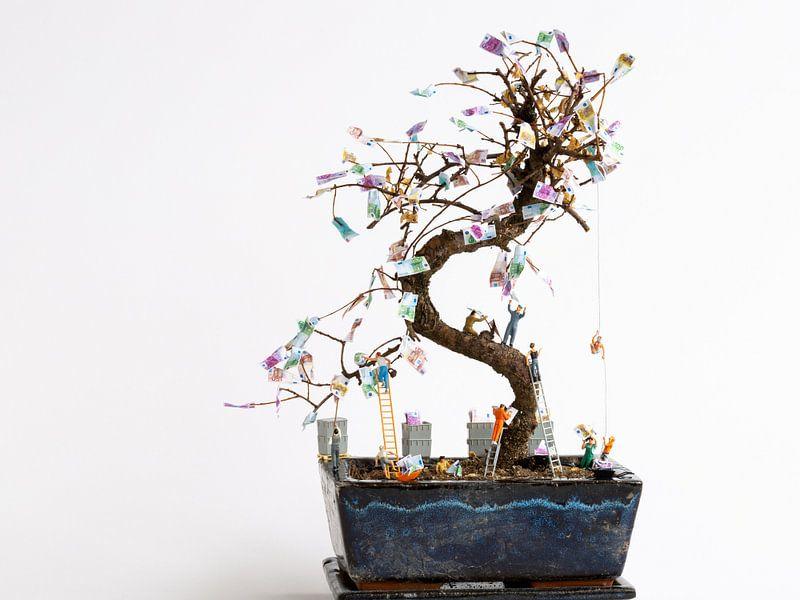 Geldbaum von Sandra Perquin