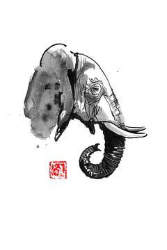 olifantenprofiel van philippe imbert
