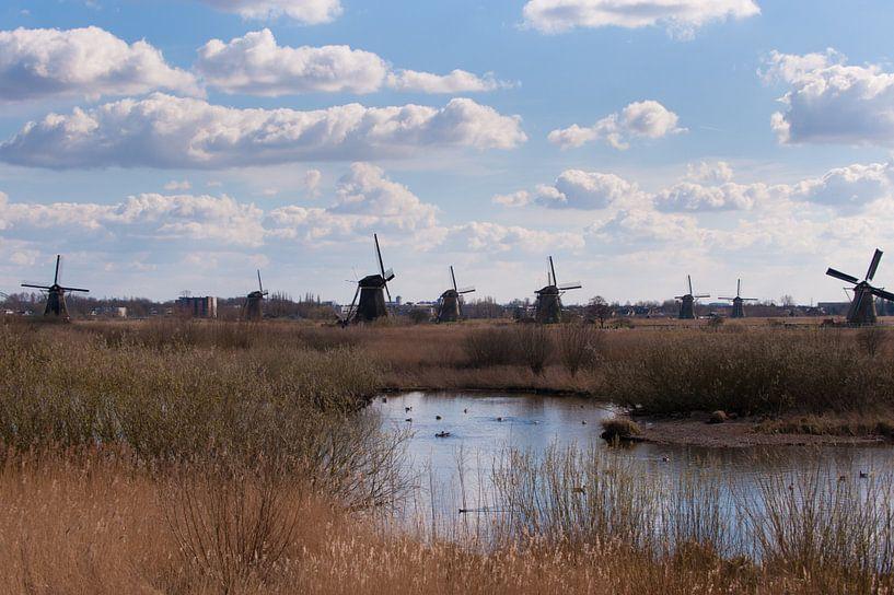 Dutch Landscape van Brian Morgan