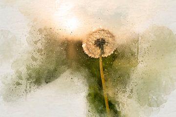 Sunny dandelion sur Arjen Roos