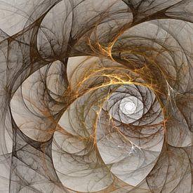 Diafragma van Harry Stok