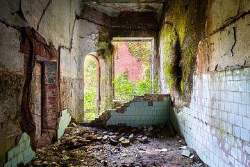 Salle abandonnée envahie par la végétation. sur Roman Robroek