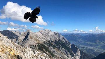 Karwendel Gipfelglück van Martina Dormann