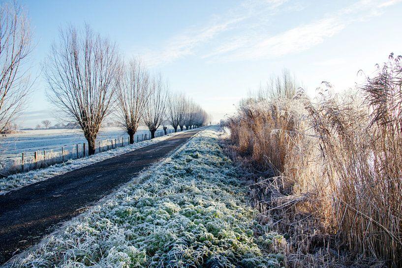 Winters polderlandschap van Annieke Slob