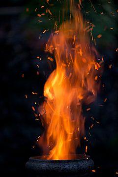 Vuur van Remke Spijkers