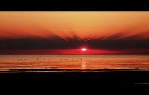 Unieke zonsondergang - Unique Sunset  van