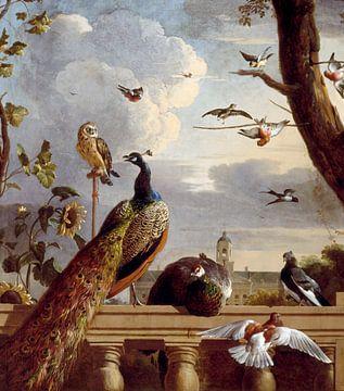 Vogels bij een balustrade, Melchior d'Hondecoeter sur