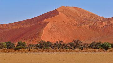 Oranje zandduin van Timon Schneider