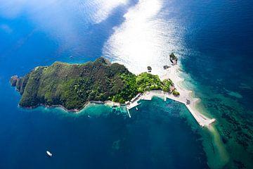 Île verte et boisée en été, vue d'en haut. Paysage en bas (photo aérienne d'un parapente) avec la cô sur Michael Semenov