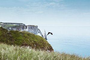 Albastenkust Normandië Frankrijk van Dirk Wüstenhagen
