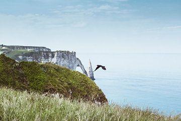 Alabasterküste Normandie Frankreich von Dirk Wüstenhagen