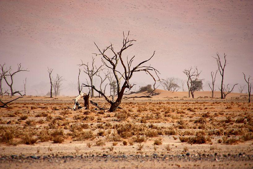 NAMIBIA ... pastel tones IV van Meleah Fotografie