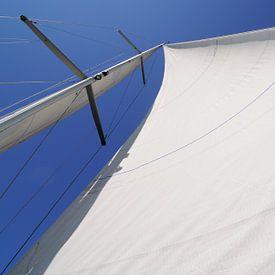 Met de wind in de zeilen: een ander perspectief von Wiljo van Essen