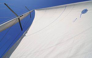 Met de wind in de zeilen: een ander perspectief
