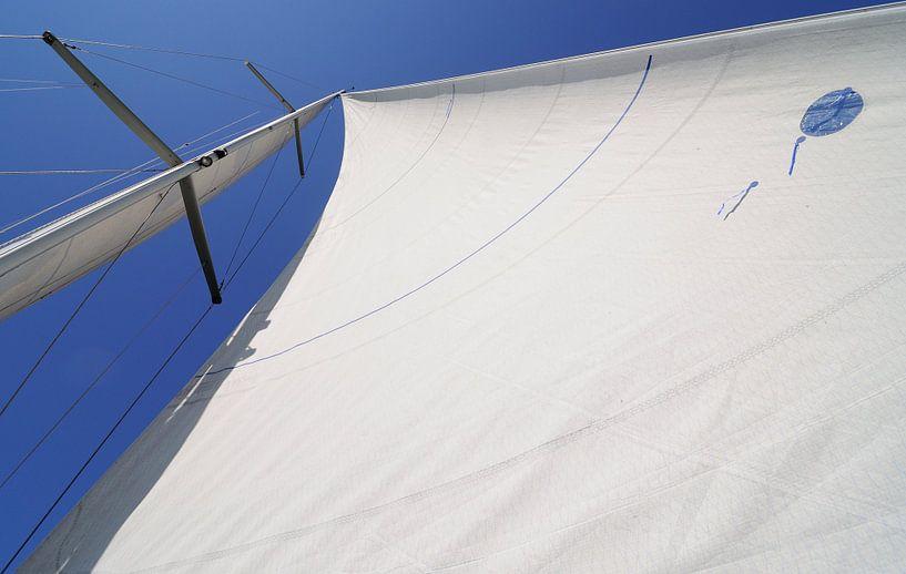 Met de wind in de zeilen: een ander perspectief van Wiljo van Essen