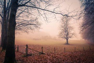 Domaine par un matin d'hiver brumeux sur Mayra Pama-Luiten