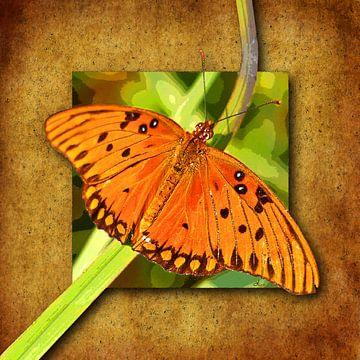 Vlinder. Golfparelmoervlinder. van Dirk H. Wendt