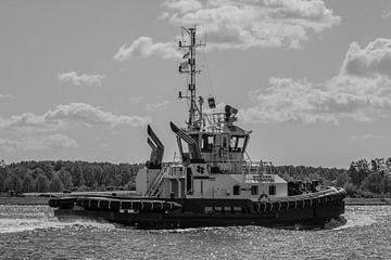 Sleepboot op het Noordzeekanaal van scheepskijkerhavenfotografie