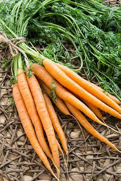 Trosje wortels van Tess Smethurst-Oostvogel