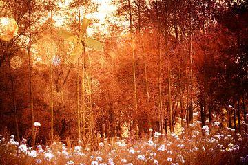 Ballett von Glühbirnen über Meer von Blumen  von Carin Klabbers