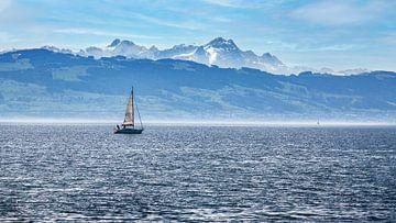 Een zeilschip op het Bodenmeer in Duitsland van Thomas Heitz
