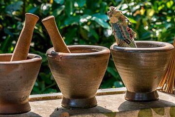 Potten met vijzels in een vensterbank in Devon, Engeland von Hein Fleuren