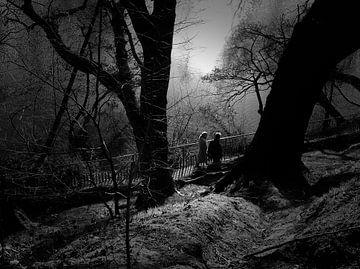 Romantische wandeling in het Park van