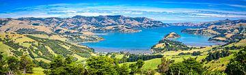 De baai van Akaroa, Zuidereiland, Nieuw Zeeland van Rietje Bulthuis
