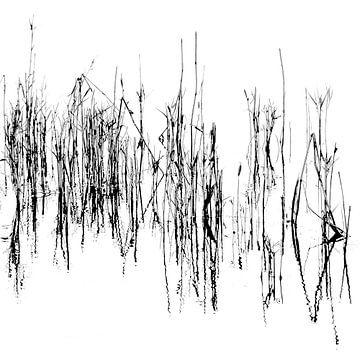 Abstraktes Schwarz-Weiß von Bert Bouwmeester
