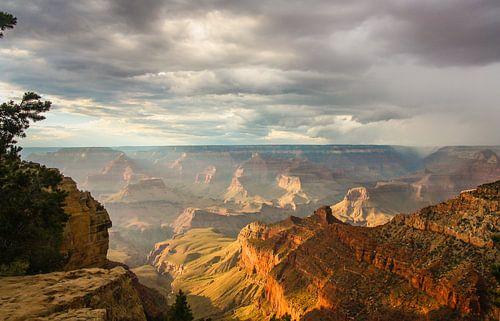 Amazing Grand Canyon van Ilya Korzelius