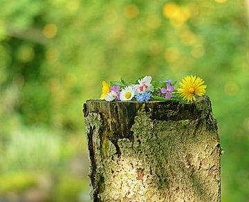Klein boeketje uit eigen tuin  von Elfriede de Jonge Boeree