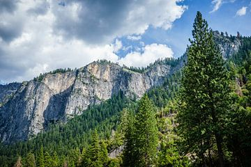 Berghelling Yosemite van