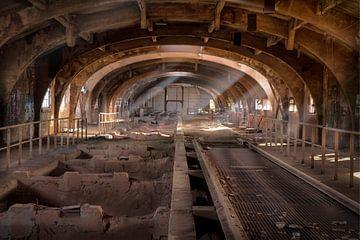 Verlassene Erzbunker aus der ehemaligen Stahlfabrik Terre Rouge (urbex) von Eus Driessen