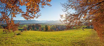 mooi herfstlandschap met zicht op de Riegsee, uitzicht op de Aidlinger Höhe, Opper-Beieren van Susanne Bauernfeind