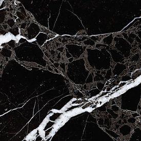 NETWORKED BLACK & WHITE v1 van Pia Schneider