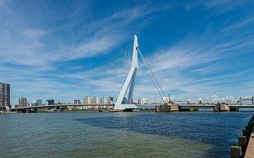 De Erasmusbrug in Rotterdam van Brian Morgan