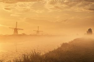 Foggy morning in Kinderdijk
