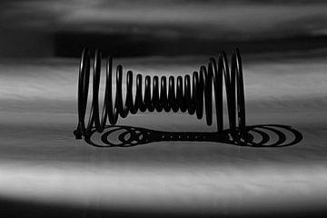 Veerkracht en Reflectie in Zwart-Wit van Wim Bodewes